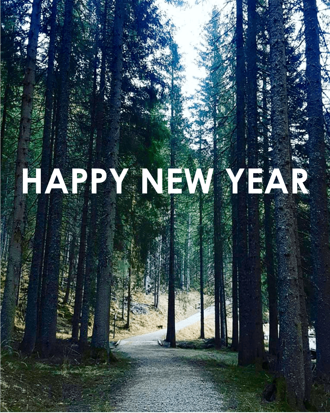 NEW YEAR NEW ADVENTURES